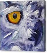 Eye On You Canvas Print