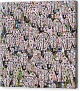 Eyedea  Canvas Print