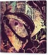 Eyes Despise  Canvas Print