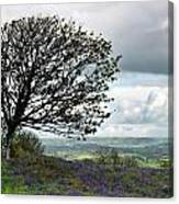 Eype Downs Overlook Canvas Print