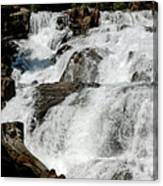 F Stop Glen Alpine Falls Canvas Print