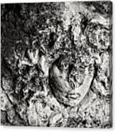 Face Carved In Stone Canvas Print