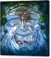 Face In Glass Canvas Print