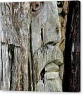 Face In The Forest Canvas Print