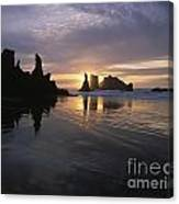 Face Rock Beach Bandon Oregon Canvas Print