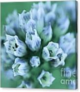 Fade To Blue Canvas Print