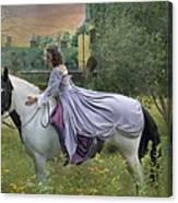 Faerie Tales Canvas Print