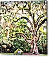 Fairchild Painted Canvas Print