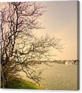 Fairhaven Lake Canvas Print