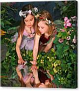 Fairies And Dragonflies Canvas Print