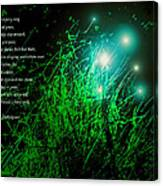 Fairy Grass Canvas Print