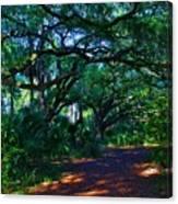 Fairy Path Canvas Print