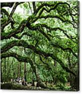 Fairy Tale Branches Canvas Print