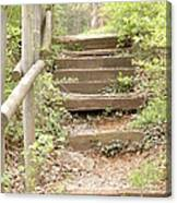 Fairytale Path Canvas Print