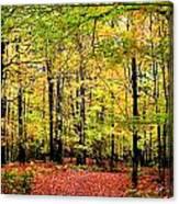 Fall 20 Canvas Print