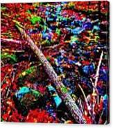 Fall 2014 Ultra 44 Canvas Print