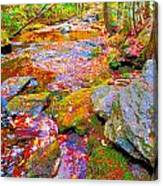 Fall 2014 Y213 Canvas Print