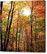 Fall 22 Canvas Print