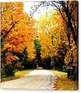 Fall 35 Canvas Print