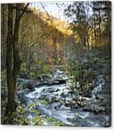 Fall Along Citico Creek Canvas Print