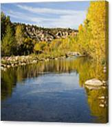 Fall Along River Sierra Ancha Canvas Print