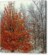 Fall And Winter 2 Canvas Print