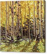 Fall Aspen Panorama Canvas Print