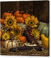 Fall Assortment Canvas Print