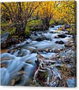 Fall At Big Pine Creek Canvas Print