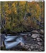 Fall At Bishop Creek Canvas Print