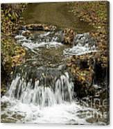 Fall At The Lower Falls Canvas Print