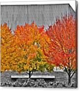 Fall At The Mann Canvas Print