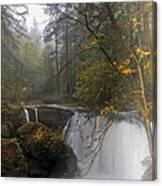 Fall At Whatcom Falls Canvas Print
