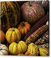 Fall Autumn Abundance Canvas Print
