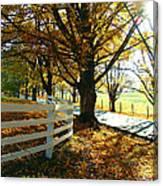 Fall Back Roads Canvas Print