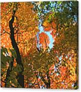 Fall Beauty Canvas Print