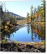 Fall Beaver Dam Canvas Print