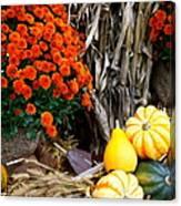 Fall Bounty Canvas Print