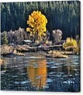 Fall Brilliance On Warm River Canvas Print
