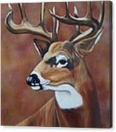 Fall Buck Canvas Print