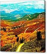 Fall Carpet At Lands End Canvas Print