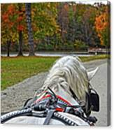 Fall Carriage Ride Canvas Print