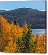 Fall Color At Caples Lake Canvas Print