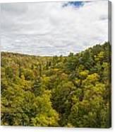 Fall Color Hills Mi 1 Canvas Print