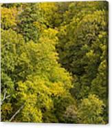 Fall Color Hills Mi 3 Canvas Print