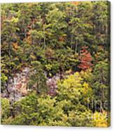 Fall Color In Little River Canyon Canvas Print