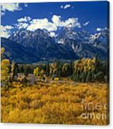 Fall Color Tetons Blacktail Ponds Grand Tetons Nationa Canvas Print