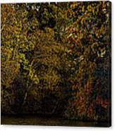 Fall Color Trees V9 Pano Canvas Print