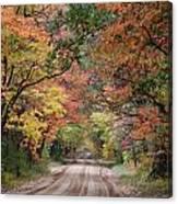 Fall Colors - 2 Canvas Print