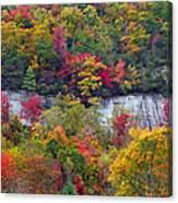 Fall Colors Along Tanasee Road Canvas Print